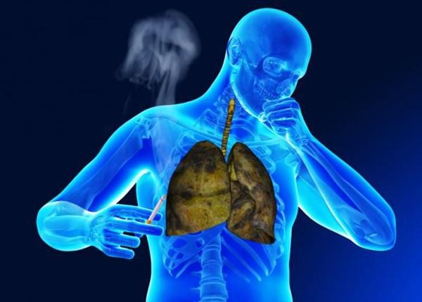 Thuốc lá làm tổn thương nhiều cơ quan trong cơ thể
