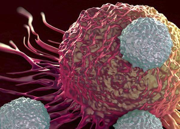Nguyên tắc ngừa ung thư hiệu quả mà mọi người nên tham khảo
