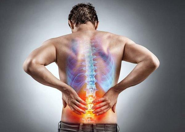 Chữa đau lưng từ những vị thuốc Y học cổ truyền có sẵn trong vườn nhà