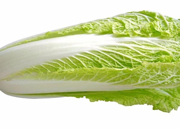 Tác dụng của rau cải thảo