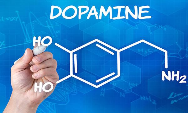 Dopamine là một loạt hormones hạnh phúc