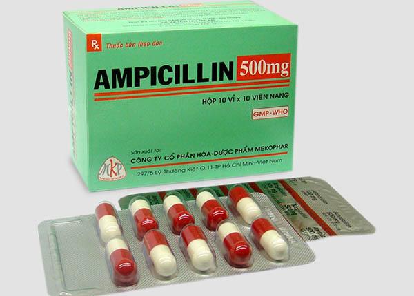 Ampicillin bệnh liên quan đến nhiễm khuẩn do vi khuẩn gây nên