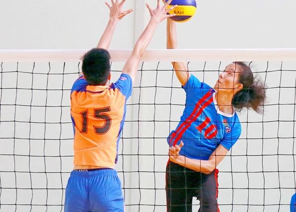 Sinh viên y dược tìm hiểu về môn bóng chuyền hơi