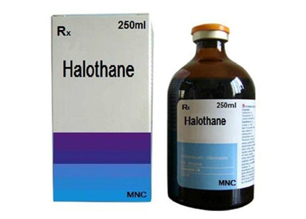 Thuốc Halothane thường được bác sĩ chỉ định trong gây mê toàn thân