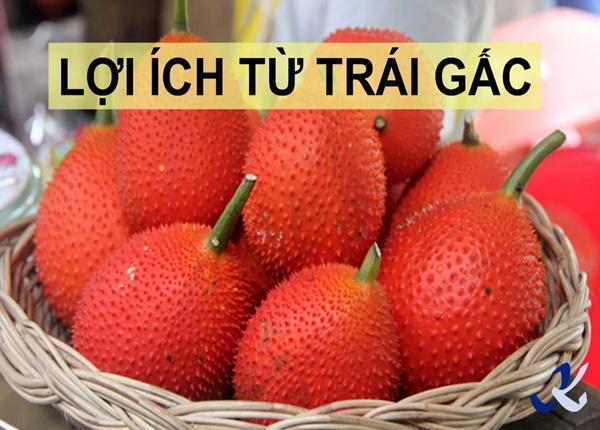 Dinh dưỡng từ trái gấc có lợi như thế nào đến sức khỏe?