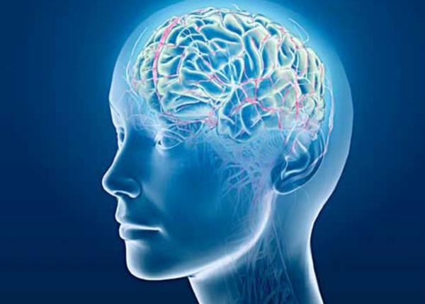 Bệnh teo não là gì?