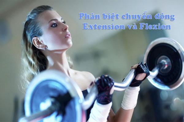 Tìm hiểu về chuyển động Extension và Flexion trong tập thể hình