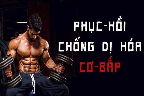 Nguyên tắc của việc phục hồi cơ bắp trong tập luyện thể hình