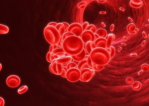 Tìm hiểu về bệnh đa hồng cầu nguyên phát