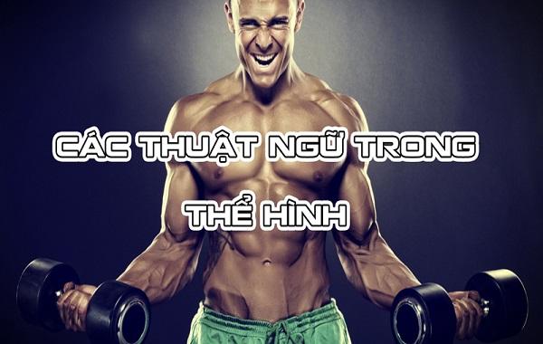 Các thuật ngữ cơ bản cần phải biết khi tập Gym