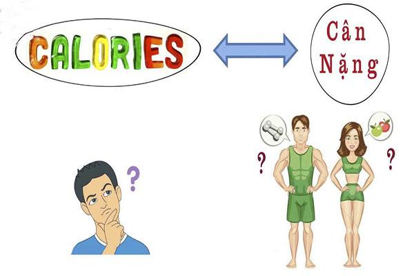 Những cách giúp tính toán chính xác lượng calo cần thiết cho cơ thể