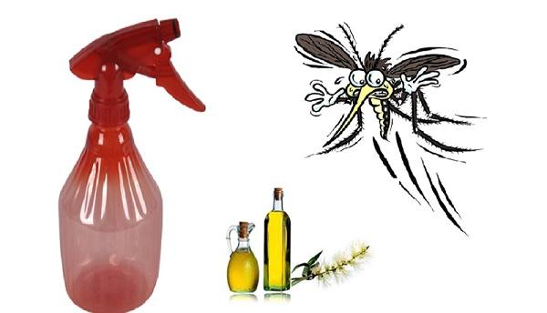 Những chú ý khi phun thuốc diệt muỗi