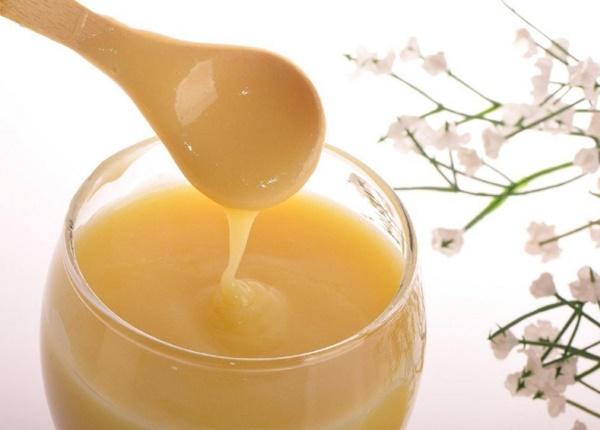 Thành phần sữa ong chúa bao gồm những gì?
