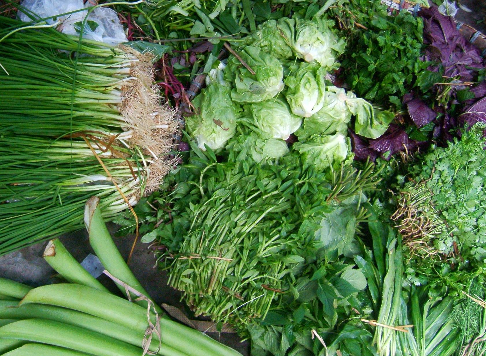 Mách bạn các loại rau thơm có lợi cho sức khỏe