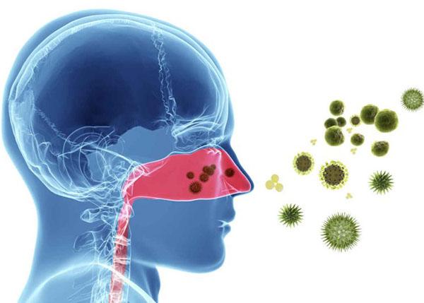 Viêm mũi dị ứng thường do nhiều yếu tố trong môi trường sống gây ra