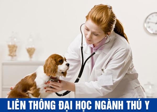 Tuyển sinh Liên thông Đại học Thú y tại Hà Nội